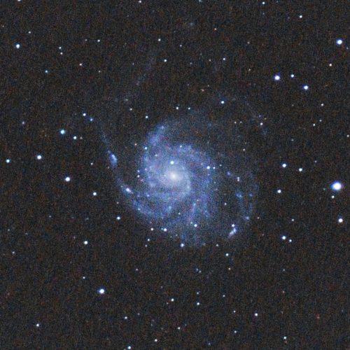 Pinwheel Galaxy (M101), my April target.